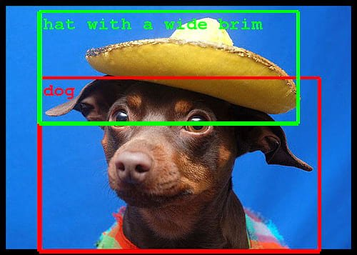 It shows two borders identifying a dog and a hat with a wide brim it's wearing