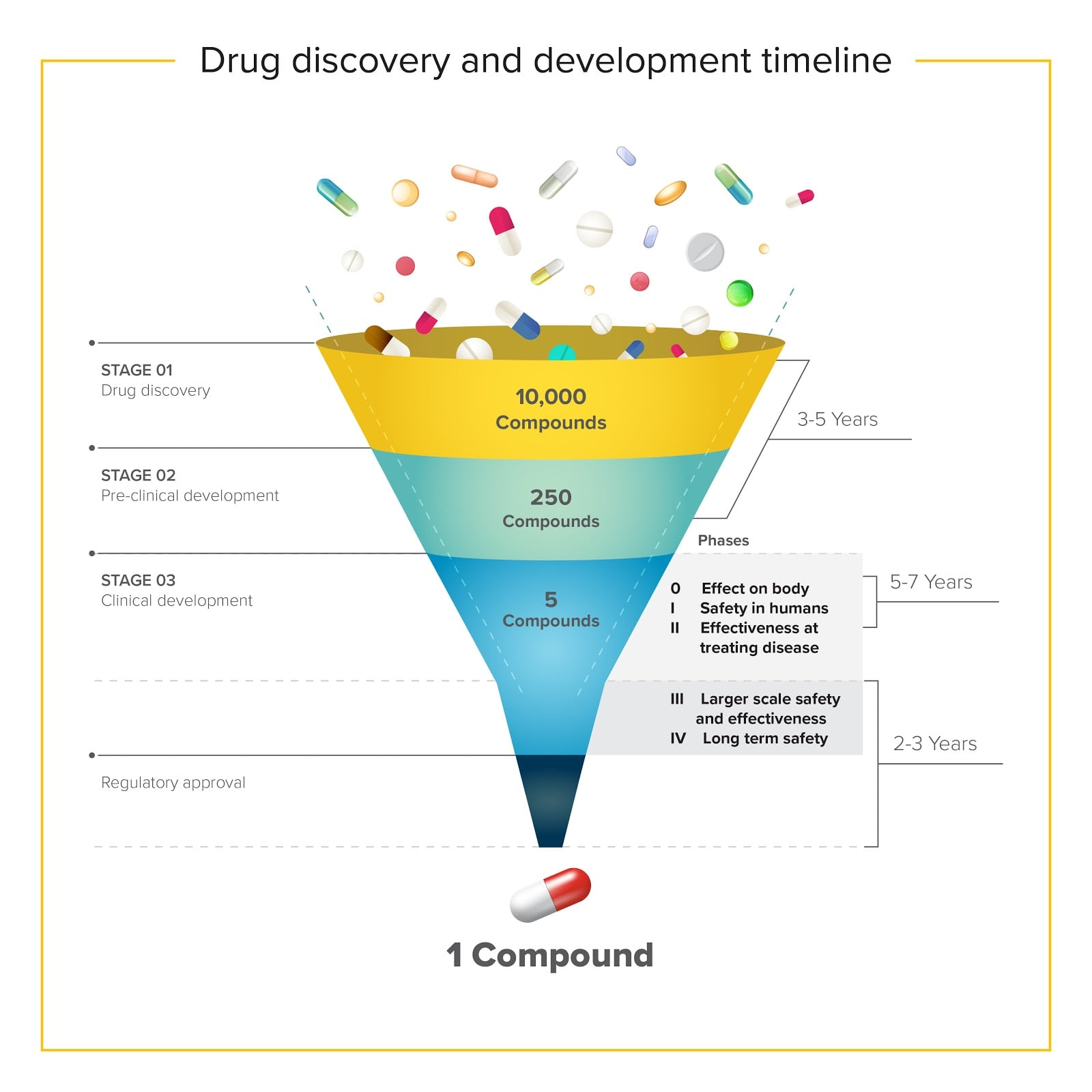 Drug discovery and development timeline